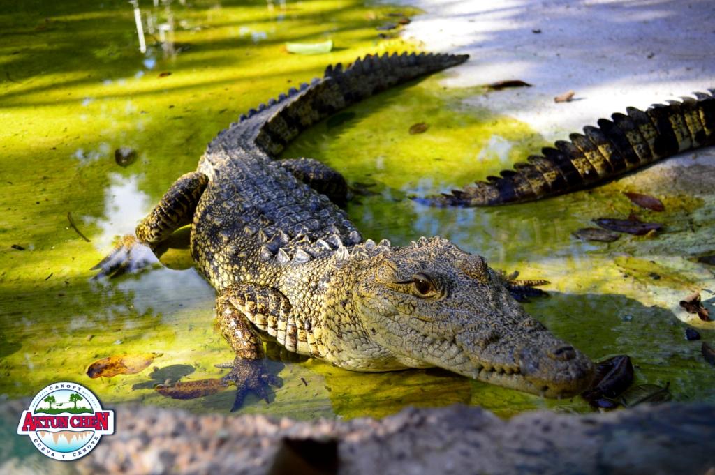 sitios turisticos de yucatan