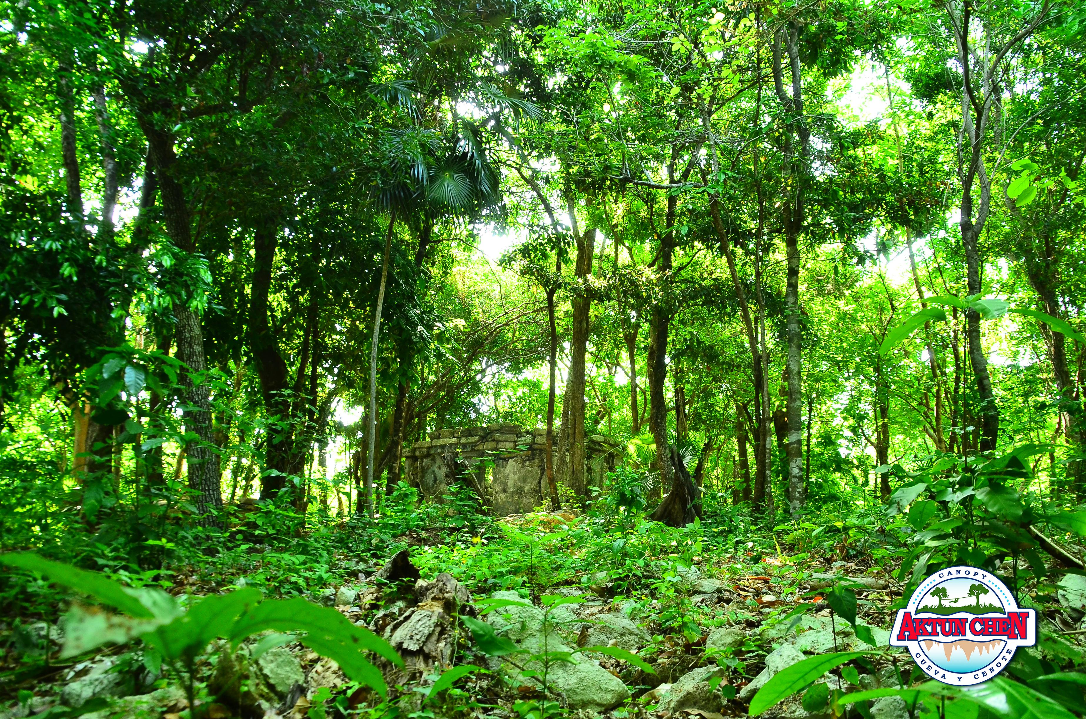 nature park, nature park mexico, nature park driving range